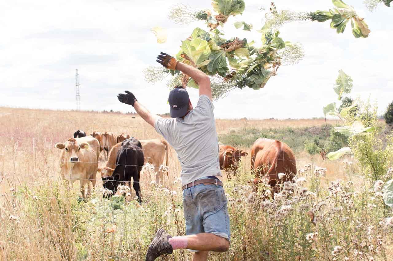 Farm of Ideas Seed Exchange