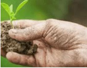 Agroecology21