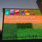 Expo 2015 Israele