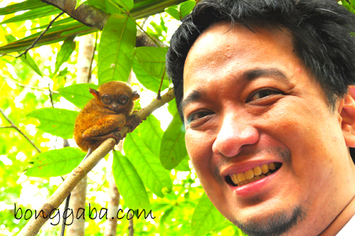 What to do in Bohol