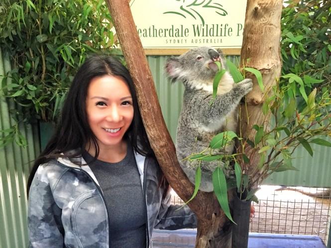 sydney australia travel guide opera house koala kangaroo featherdale wildlife park