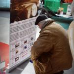 Un passant lisant le Rollup BLV - À quoi peut bien servir ce site ?!