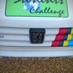 Calandre de la Peugeot 309 SX Rebecca N°130 aux couleurs PTS