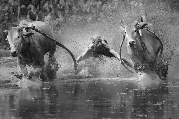 Highlights from the 2014 Sony World Photography Awards Shortlist (1)