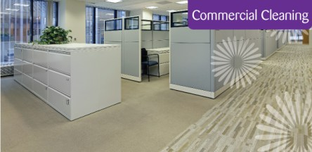 Commercial carpet cleaning in Bristol
