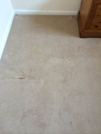 Before carpet cleaning by Bonne Fresh Clean