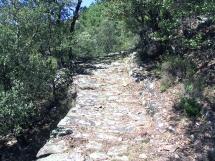 Sentier-Bosc1