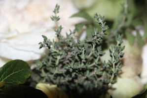 thyme real flower by Millie Coady-Booth