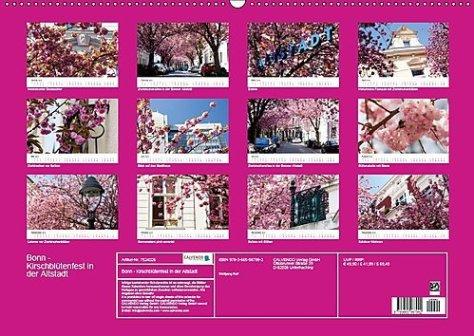 Bonn - Kirschblütenfest in der Altstadt (Wandkalender 2018 DIN A2 quer)