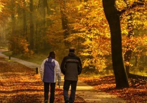 couple in a walk