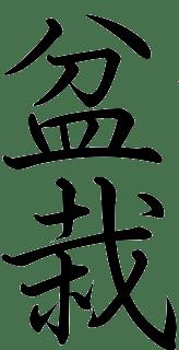 Bonsai Tree Meaning And Symbolism Bonsaidojo
