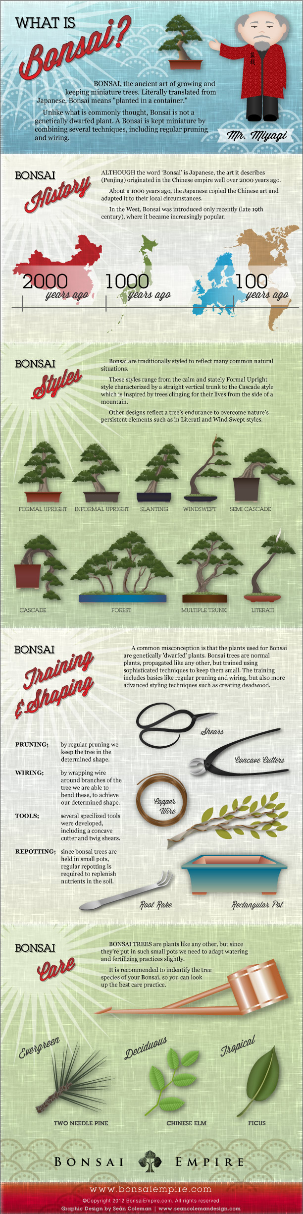 Bonsai infographic; what is bonsai and how do I start?