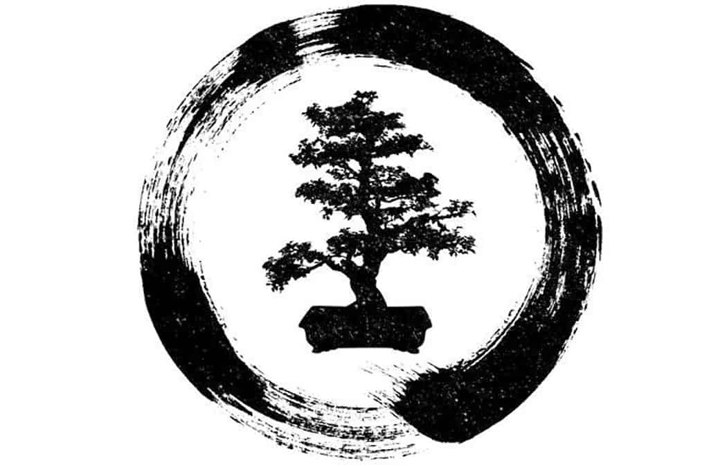 What Does Bonsai Trees Symbolize Bonsai Sanctum
