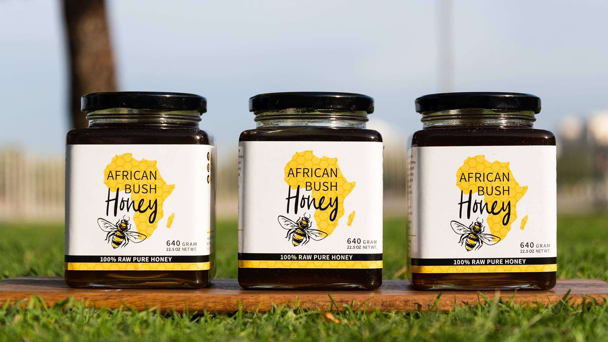 logo etiket african bush honey