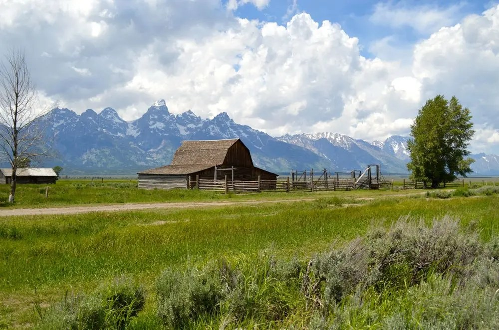 Summers in wyoming the ultimate jackson hole guide bon for Wyoming home insurance