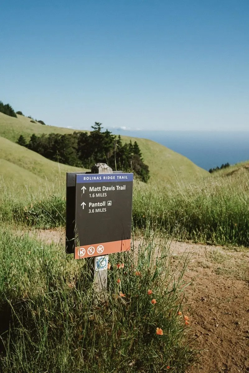 My Favorite Trails in Mount Tamalpais