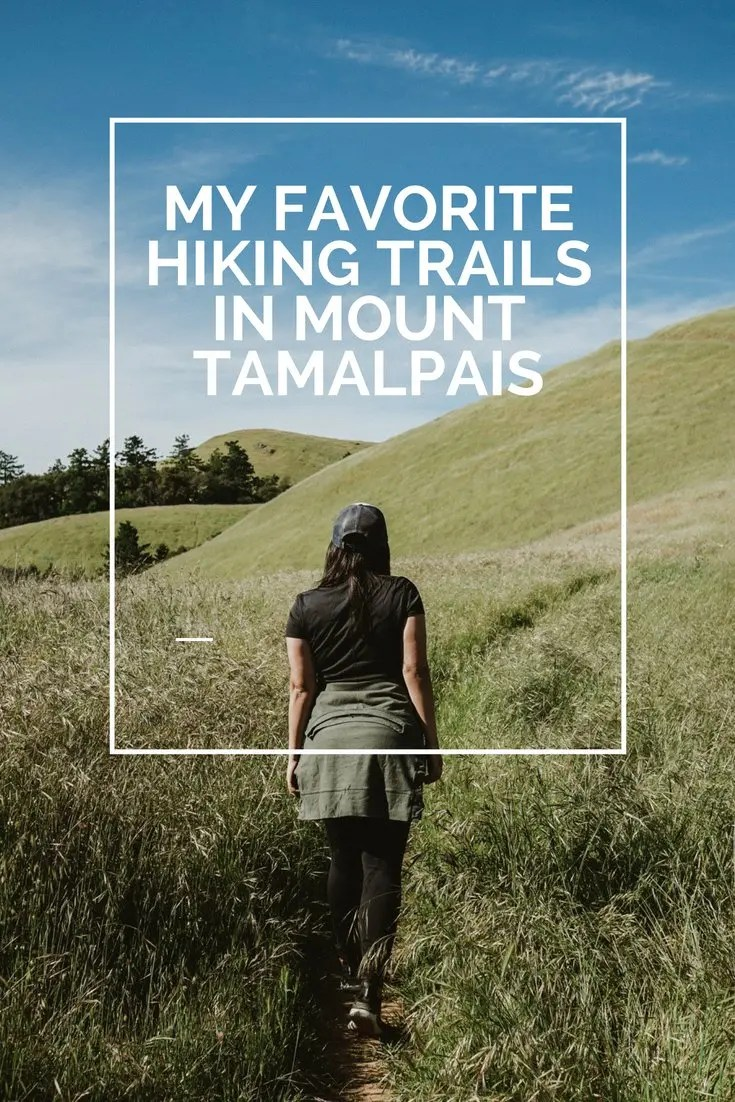 My Favorite Hiking Trails in Mount Tamalpais
