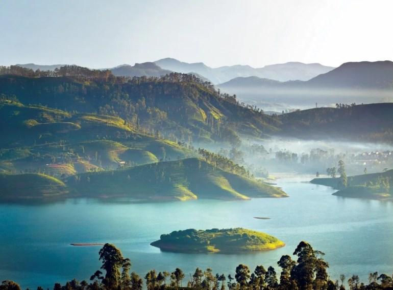 Ceylon Tea Trails in Tea Country