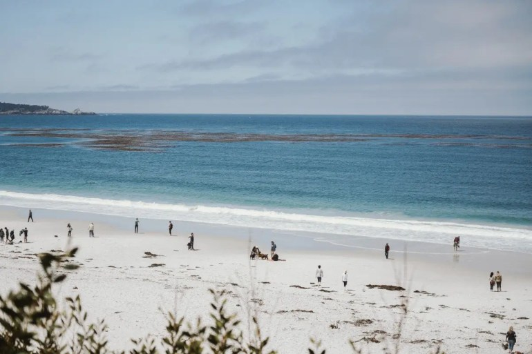 Best Things to Do in Carmel, California