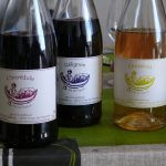 vins naturels d'Anjou