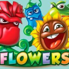 Flowers de Netent dans les casinos de France-min