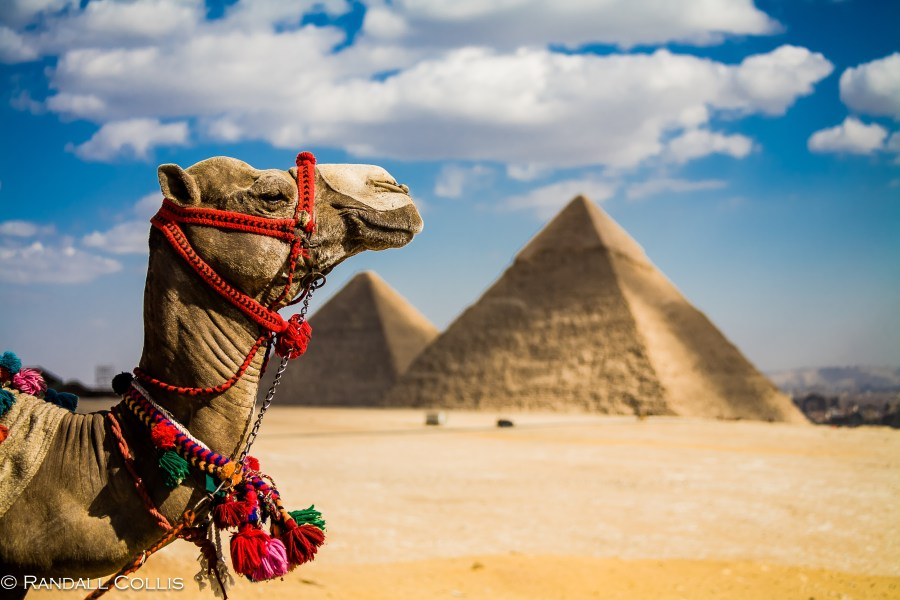 Egypt : Land of the Nile and the Pyramids, everyone's bucket list!