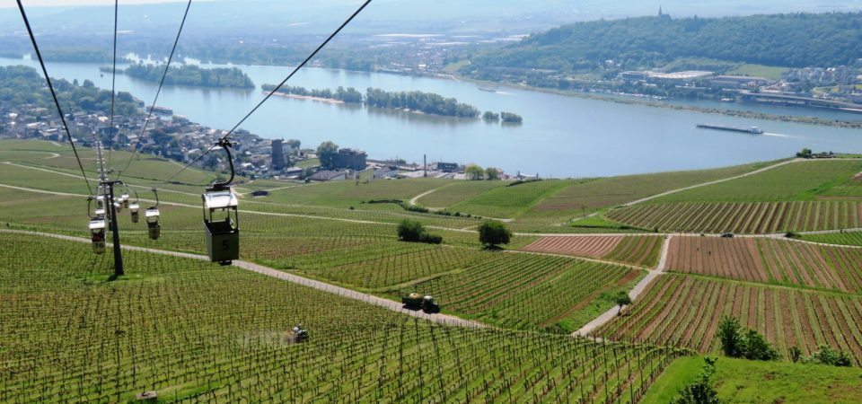 EARLY SUMMER ON THE RHINE WITH AMAWATERWAYS​
