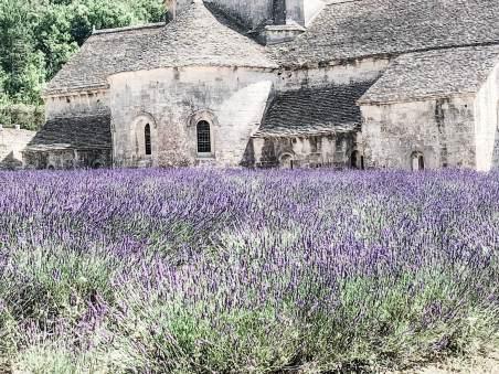 hotel.review.la.nesquiere.lavendar.fields