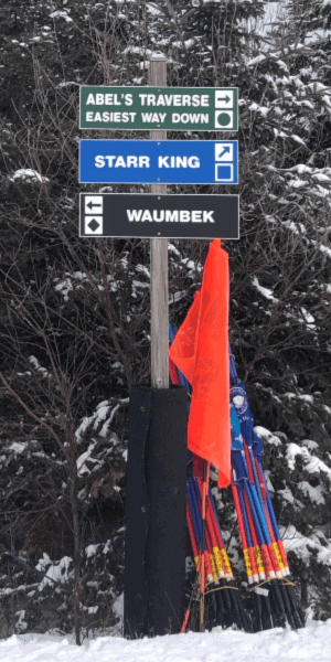 skiing-with-kids-trail-signs