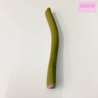 Bonza Confectionery - The Watermelon Stick End