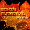Bonzai Elemental - Autumn Chillz 2K9
