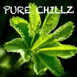 Pure Chillz – Volume One