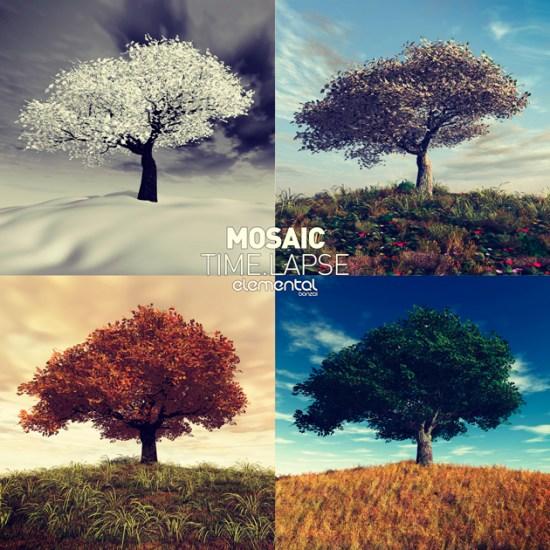 MosaiCTime.LapseBonzaiElemental630x630
