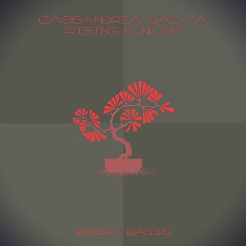 CASSANDRIA DAIVA – RISING FUNK EP (BONZAI BASIKS)