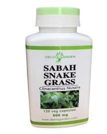 Sabah snake grass from Delvix Garden capsules