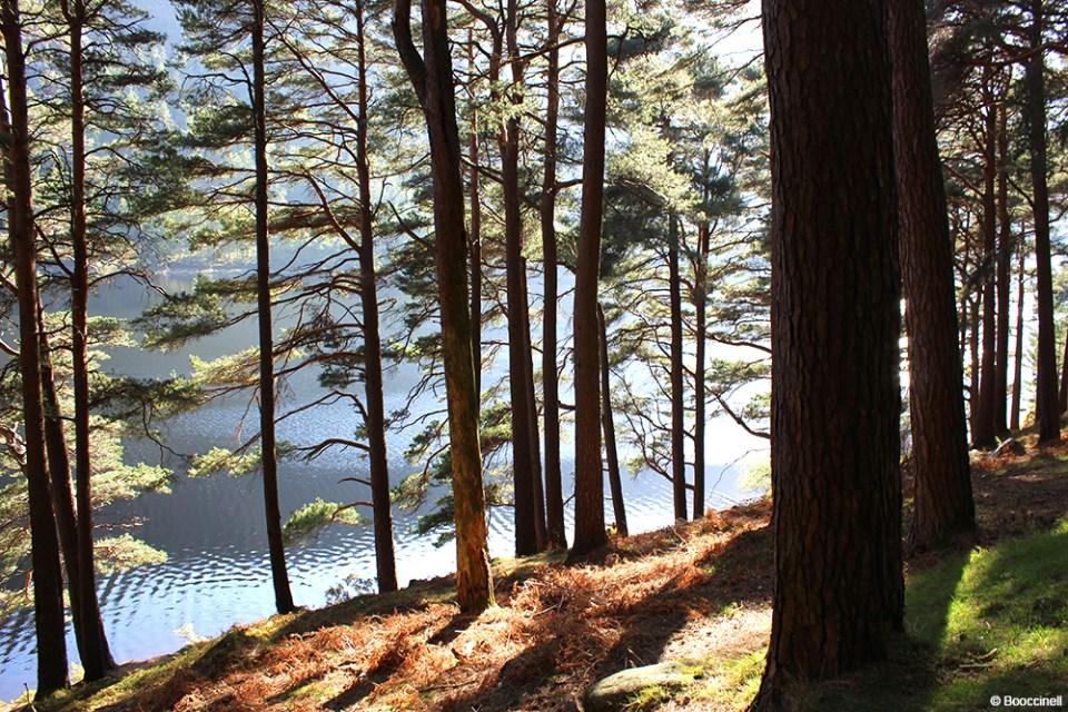 une journée à Glendalough