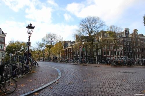 Pour finir, mes favoris lors de mon weekend à Amsterdam.