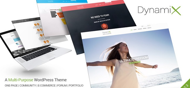 dynamix template wordpress