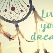 dromenvanger Booest