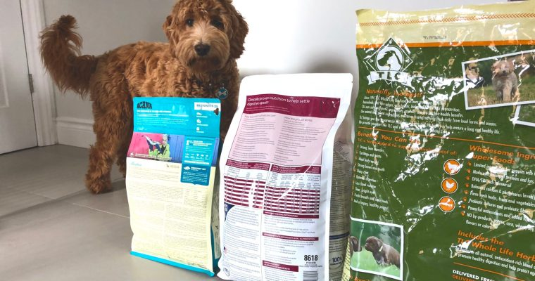 It's All In The Label: Thoughts on dog food from the vet