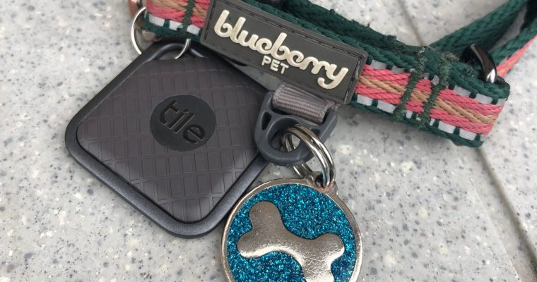 BlooTooth Technology: Pet Tech for Only $25