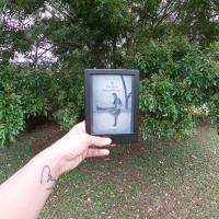 Libri che ti segnano indelebilmente: Un albero cresce a Brooklyn, classico statunitense di Betty Smith.