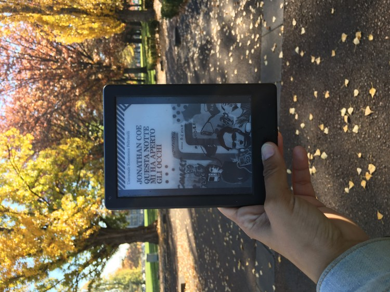 Diario Letterario Di Un'italiana In Australia - Capitolo 32: from Sydney to Toora