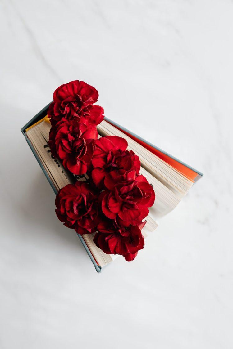 consigli di letturalibri con storie d'amore disfunzionali