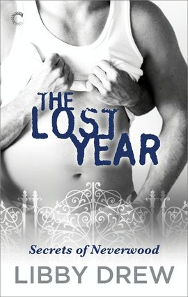 The Lost Year By Libby Drew