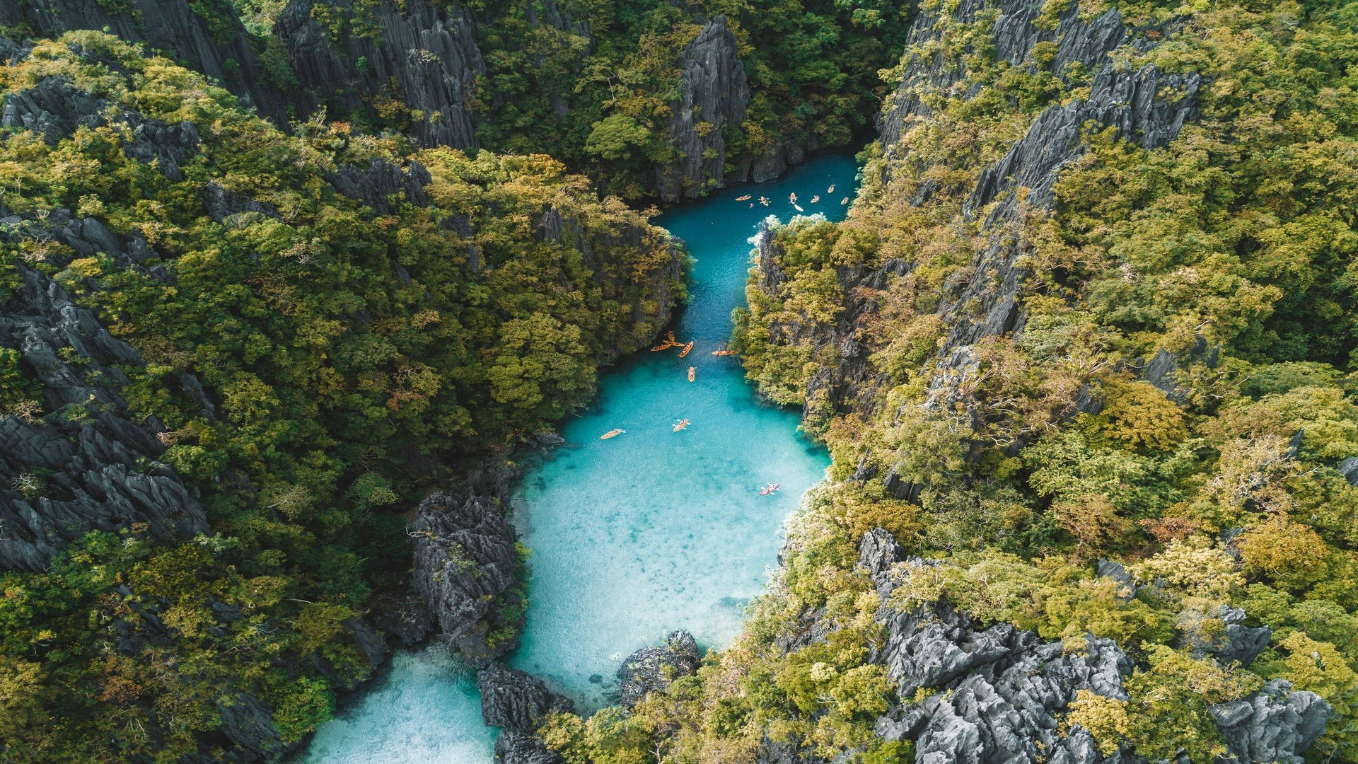 el-nido-to-cebu