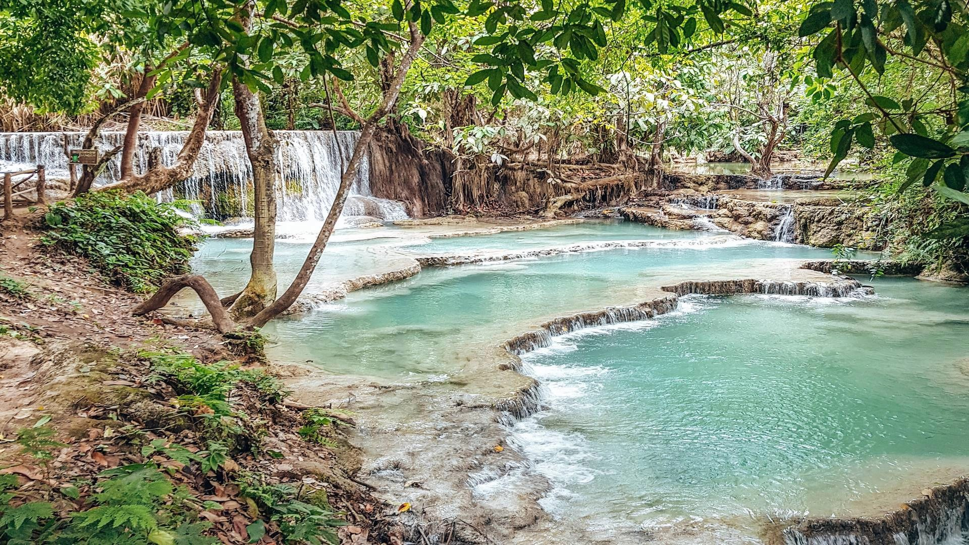 8 incredible things to do in Luang Prabang, Laos