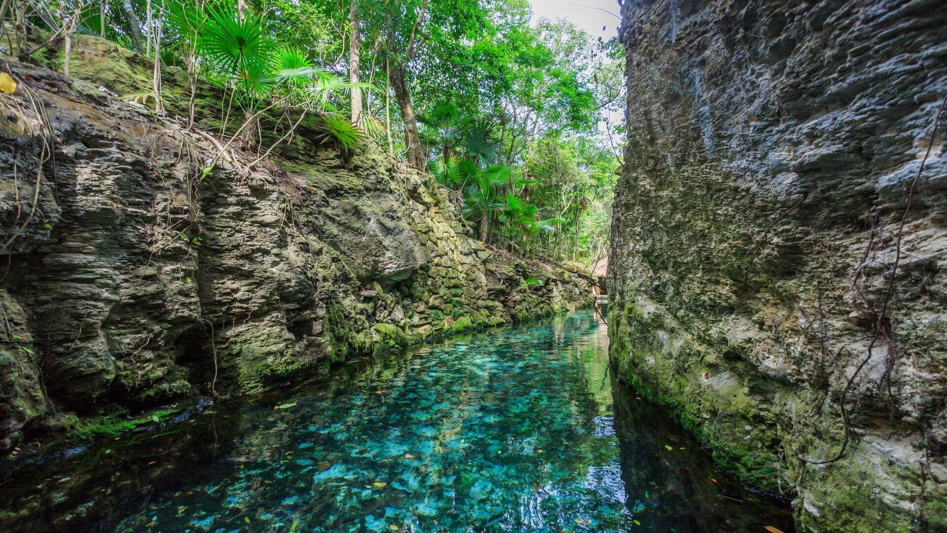 The best ways to get to Xcaret Park in Mexico
