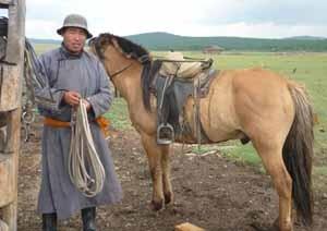 bookblast mongolian man horse