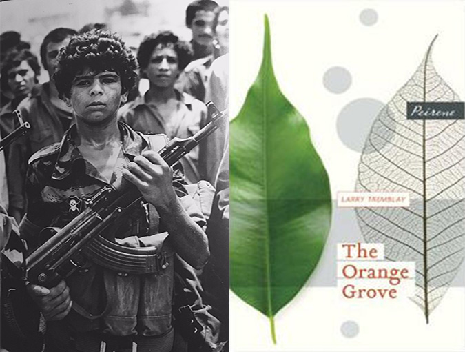 the orange grove bookblast diary review